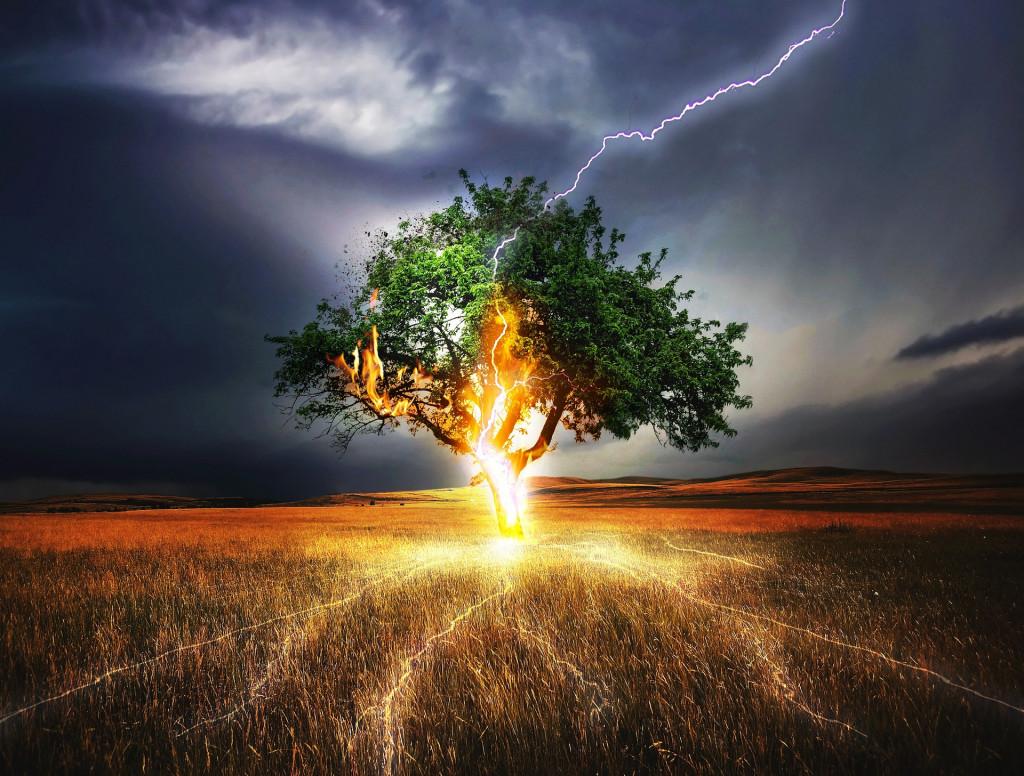 Ein Blitz schlägt in einen Baum